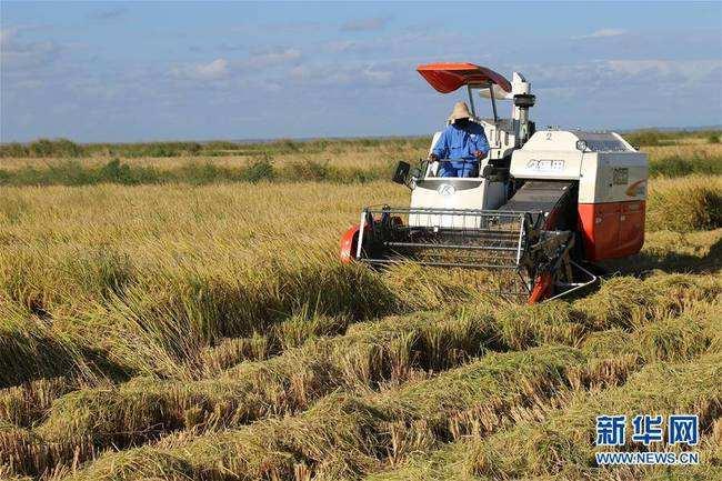 欧盟委员:将从多方面拓展中欧农业合作