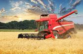 防御性+基本面转好催热农业板块 近3亿元资金涌入8只龙头股