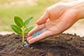 农产品轮番涨价多家公司将受益