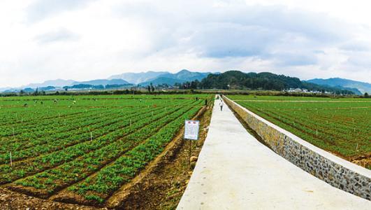 金通灵携手中投中财推广农业生态产业园项目