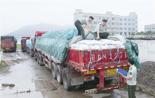 加速下跌 白糖期货主力合约创新低