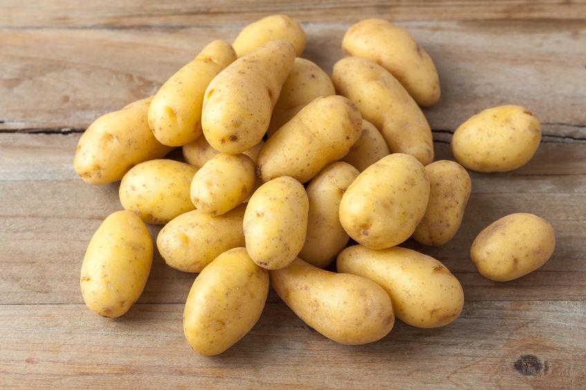 云南:马铃薯产业已成脱贫重要产业