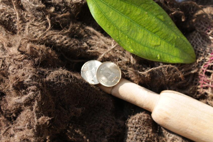 阿里巴巴脱贫基金发布半年报 按5条脱贫路线正在行动