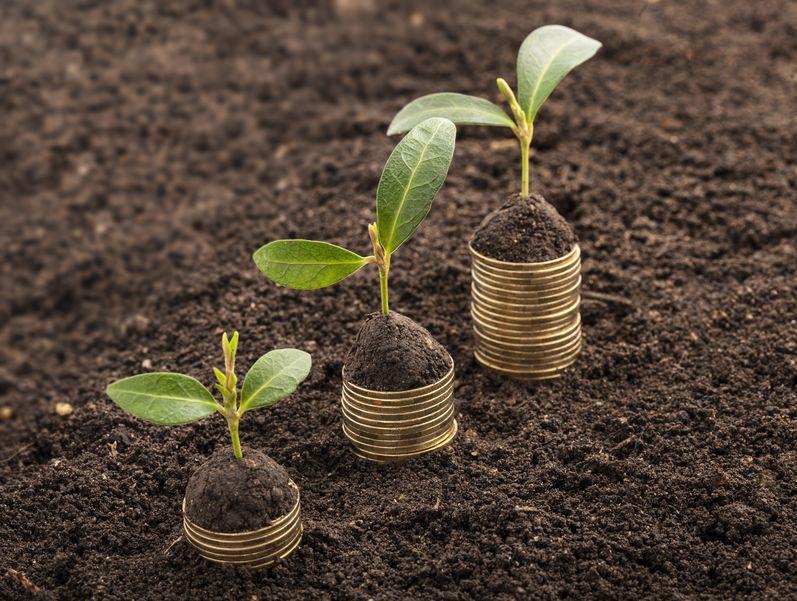 民政部:中国农产品市场协会参与脱贫攻坚取得良好实效