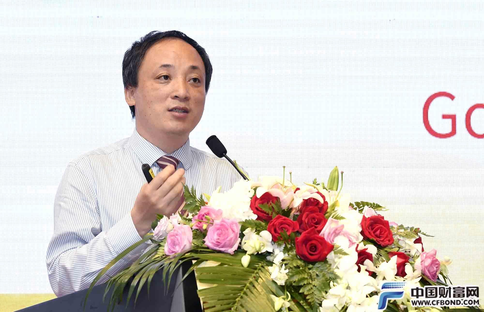 国务院发展研究中心陈道富发言