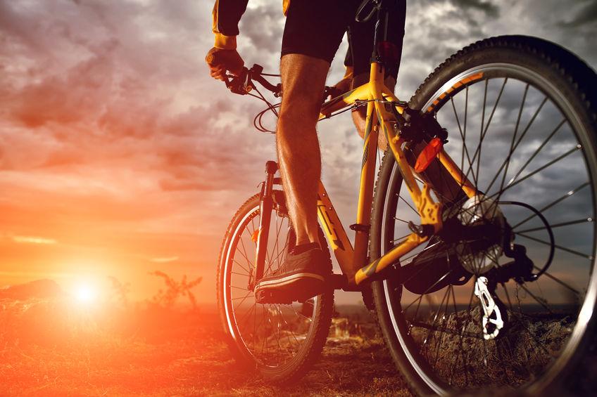 河北力推自行车产业高质量发展