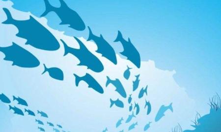 江西多举措保护水生生物多样性