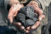 煤炭板块逆市翻红 行业机会有望来临