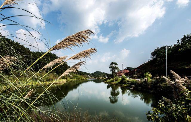 【潯龍河】從尋龍河到潯龍河
