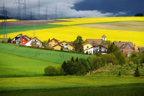 利津县:田园综合体点亮美丽乡村