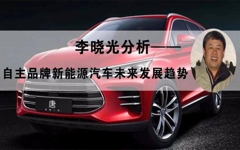 自主品牌新能源汽车未来发展趋势