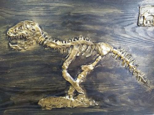河北丰宁发现1.3亿年前疑似新属种恐龙化石