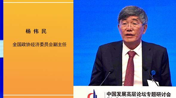 楊偉民:產權制度改革和市場化改革必須同步