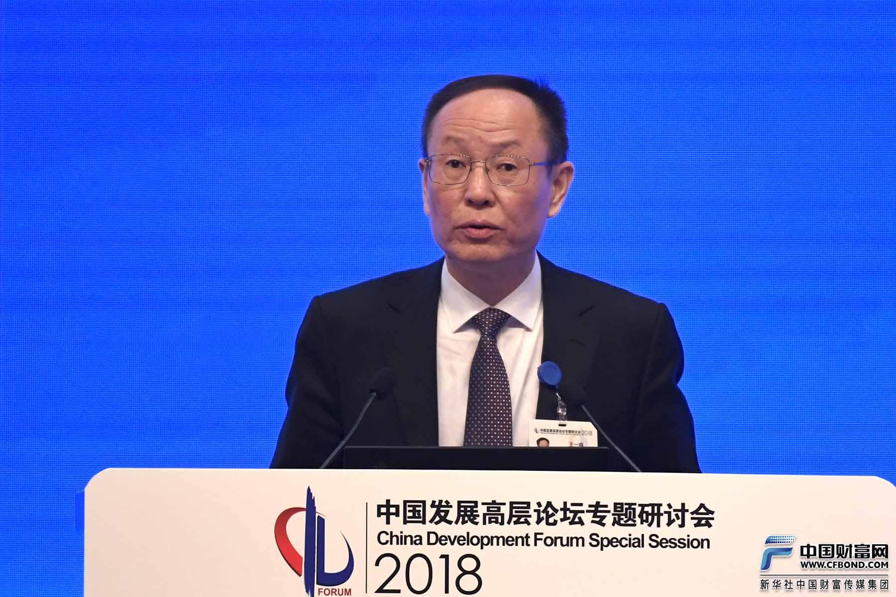 国务院发展研究中心副主任王一鸣发言