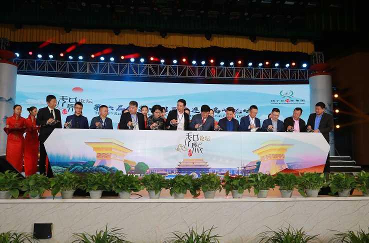 第六届健康中国医药连锁高峰论坛在泰州举行