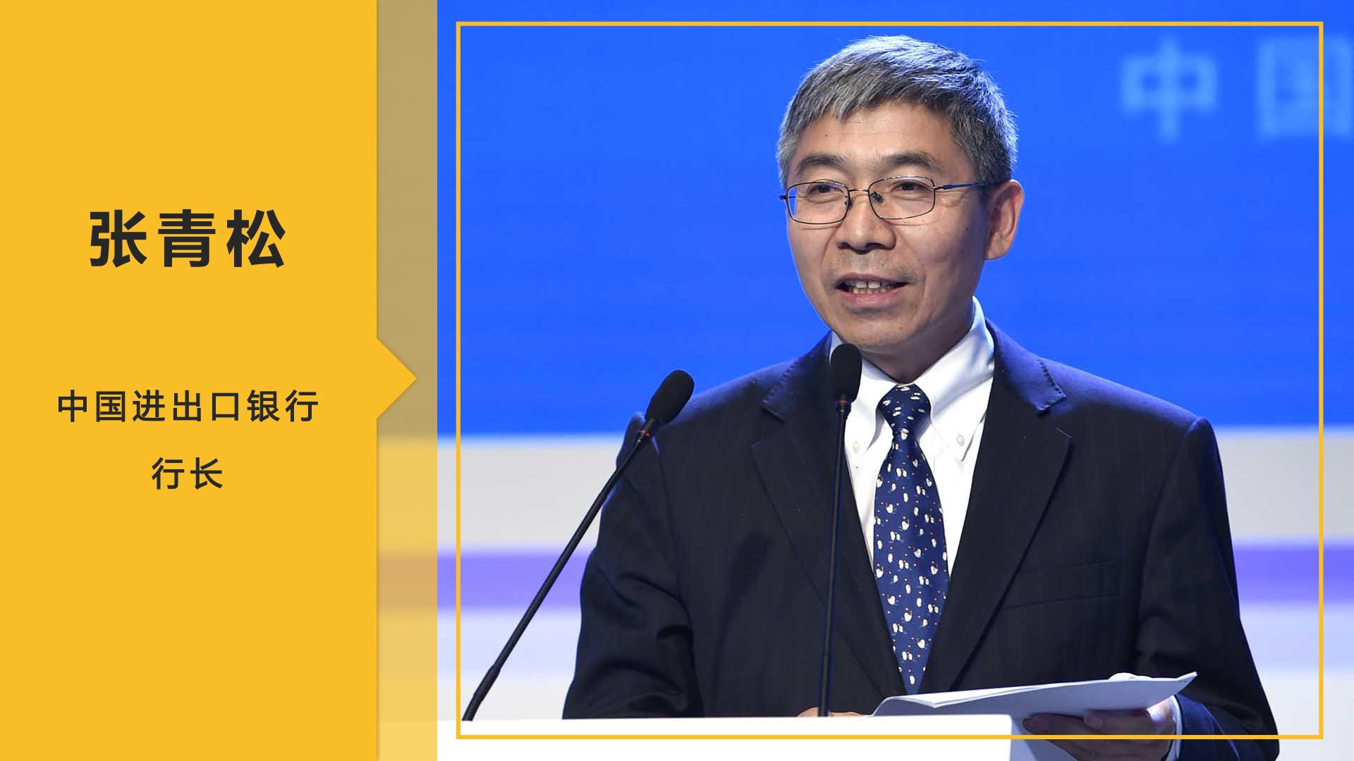 张青松:发挥政策性金融的引导和带动作用