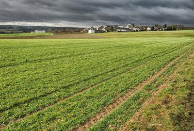 首个国家农业开放发展综合实验区日前获批