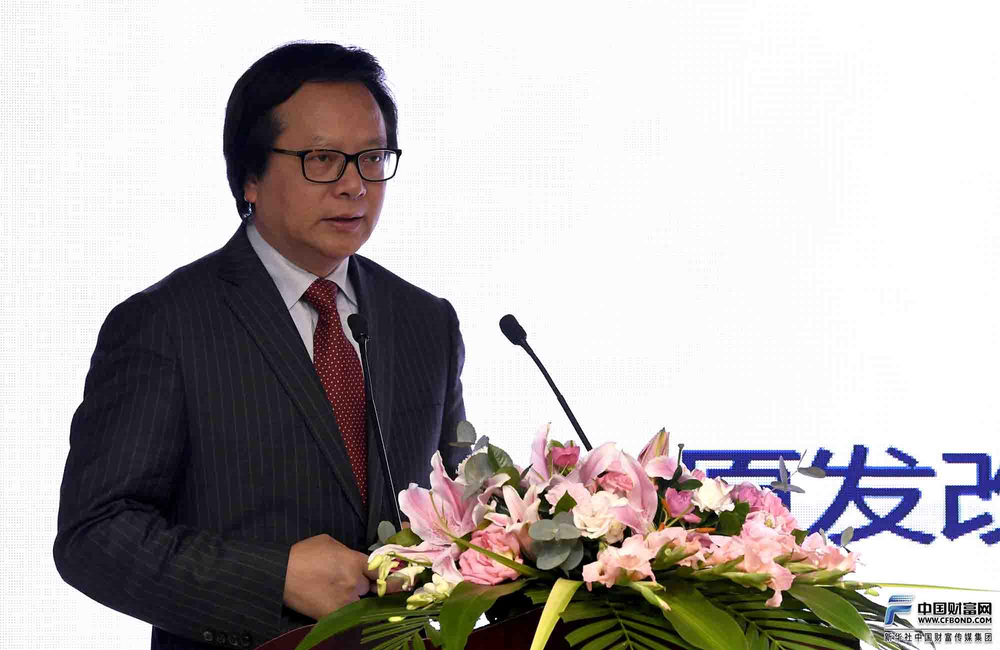 原发改委城市和小城镇改革发展中心主任、 中美绿色基金董事长徐林