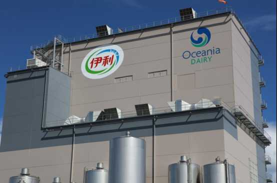 金典新西兰纯牛奶特供国际展望大会 卓越品质引领乳业丝路