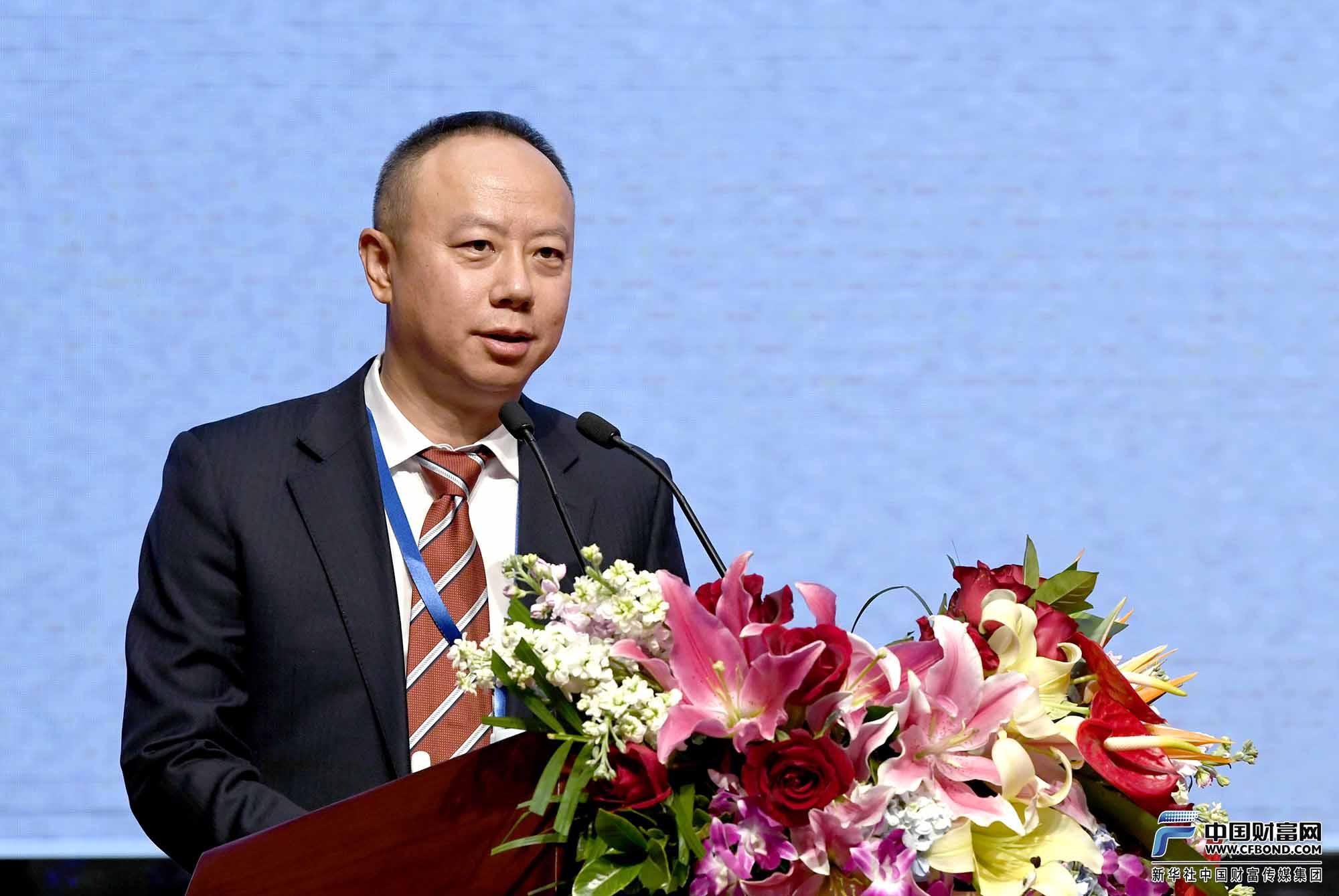 主旨演讲:中国投融资担保股份有限公司总裁石军