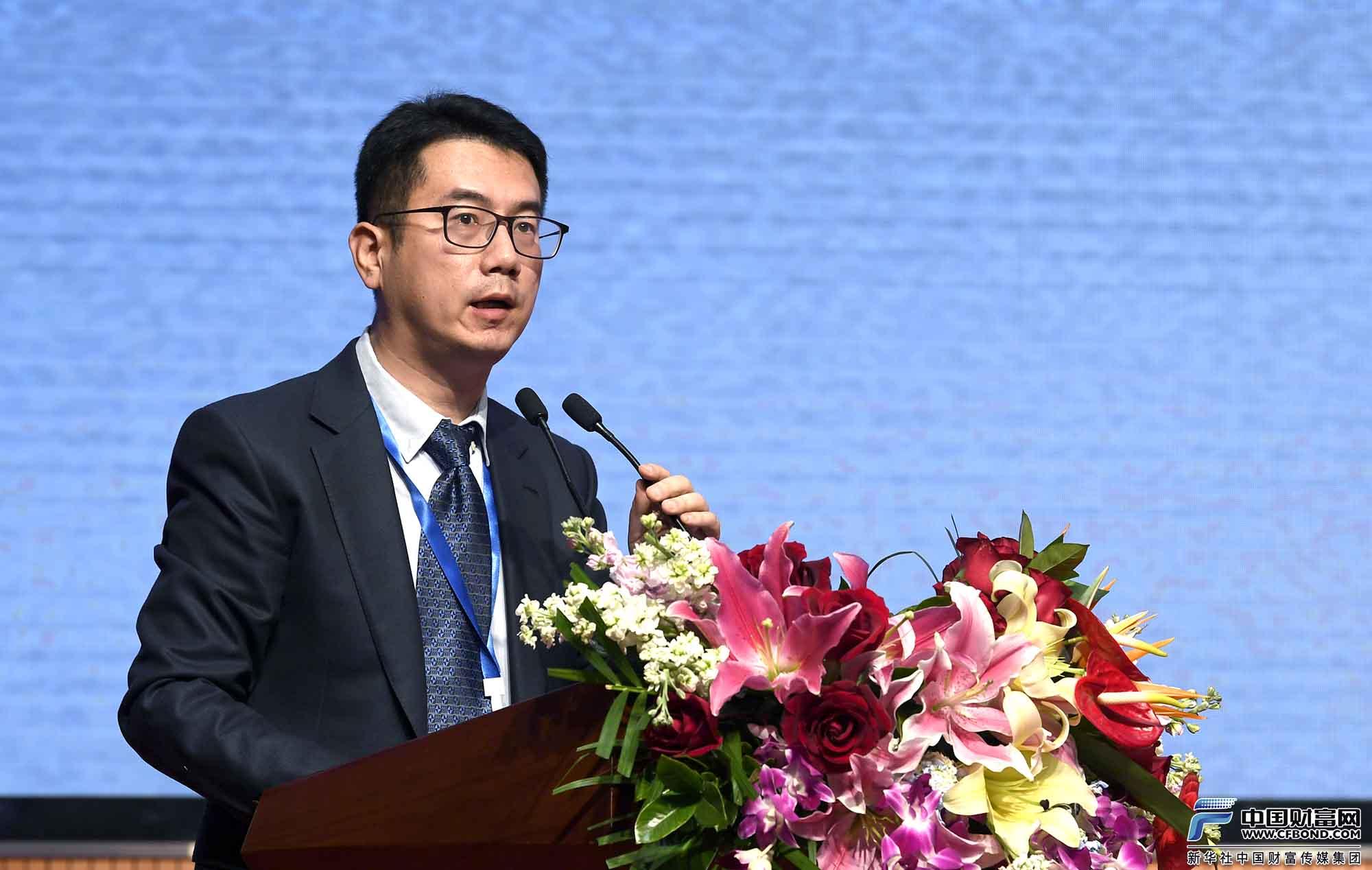 专题演讲:中投保公司执行总裁李峰