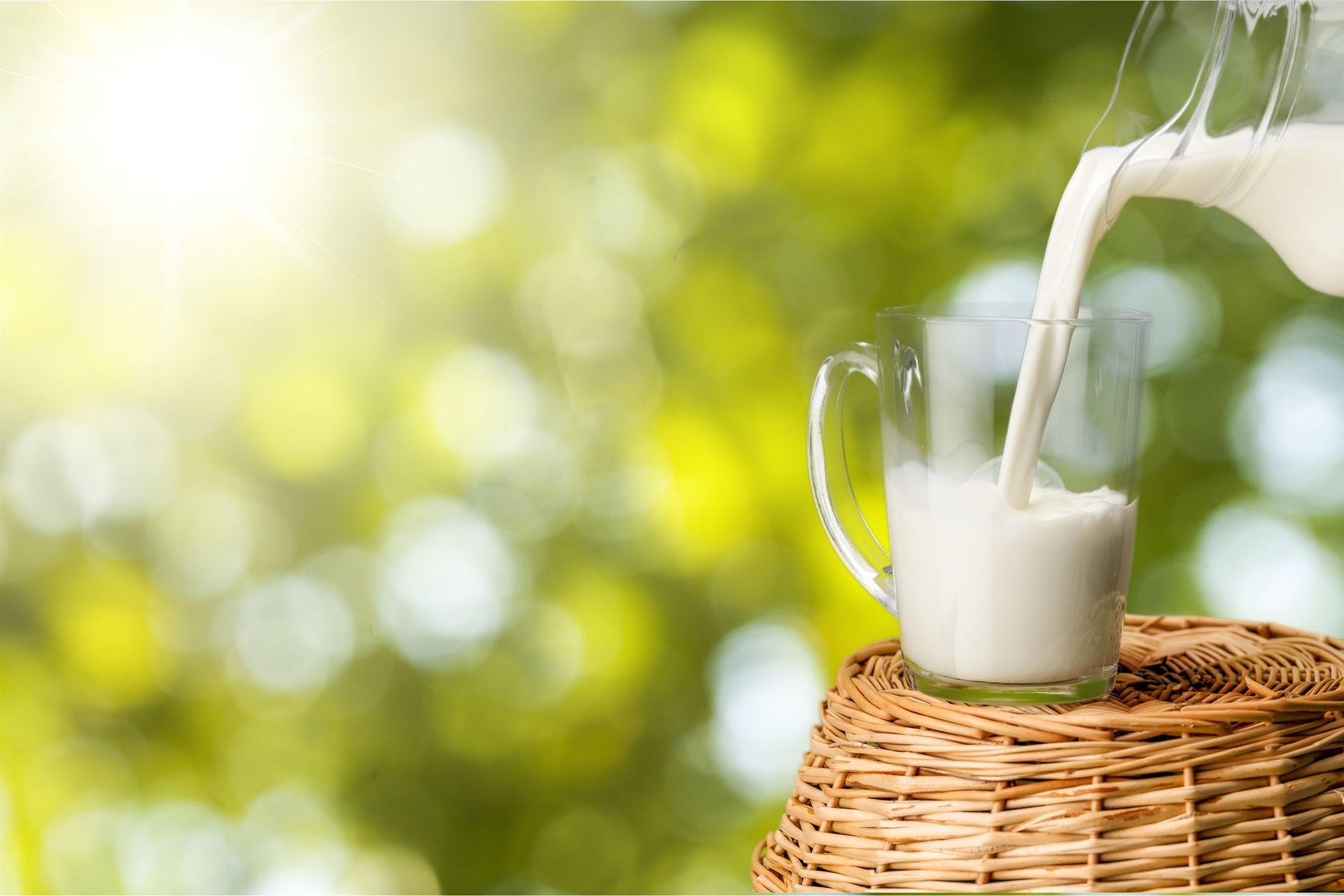 农业农村部等多部委发文:进一步促进奶业振兴