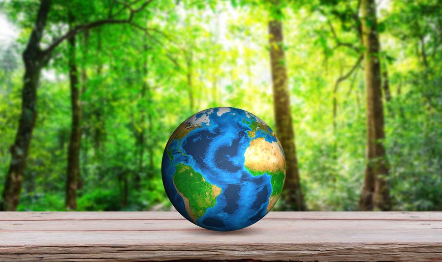 中欧携手绿色可持续发展
