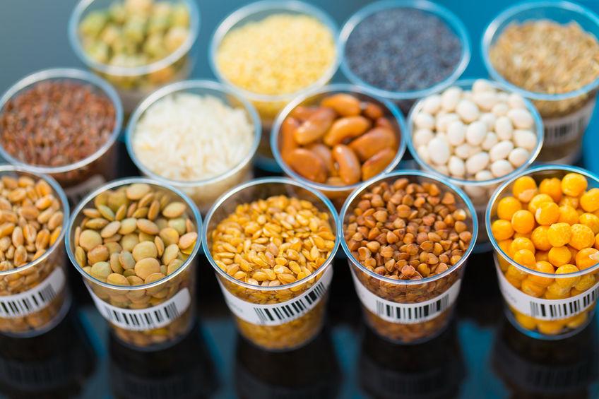 芝加哥农产品期价3月11日全线下跌