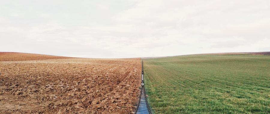 河南今年要完成1000万亩农田的水价改革任务