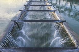 两部门印发《国家节水行动方案》