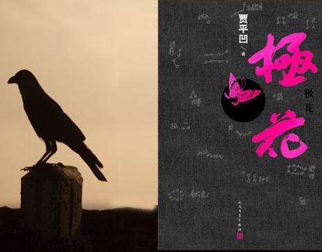 《极花》英文版新书发布 让世界听到中国农村女性声音