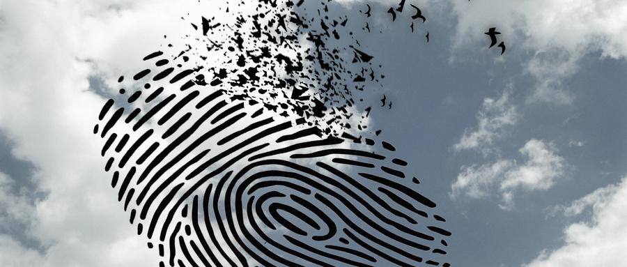 """""""借出""""小小身份证竟能惹来大祸——一网络电信诈骗案揭开身份信息迷踪"""
