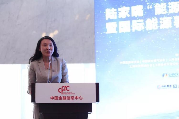 金淑萍:集眾智合眾力 中國海油創新助力天然氣產業健康發展