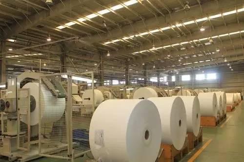 纸浆期价一跌再跌 利好部分造纸股