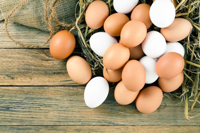 節日備貨因素支撐蛋價