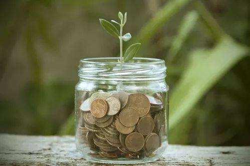上半年公募基金募资超4600亿元 债券指数产品成增长主力