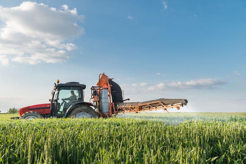 2019年全国夏粮生产获得丰收