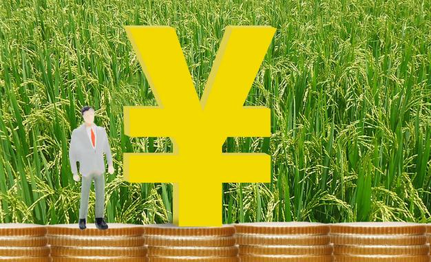 中國寶武推動產業扶貧