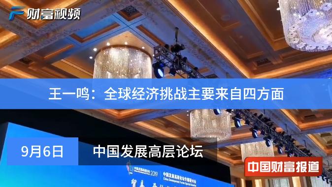 【中国财富报道】王一鸣:全球经济挑战主要来自四方面