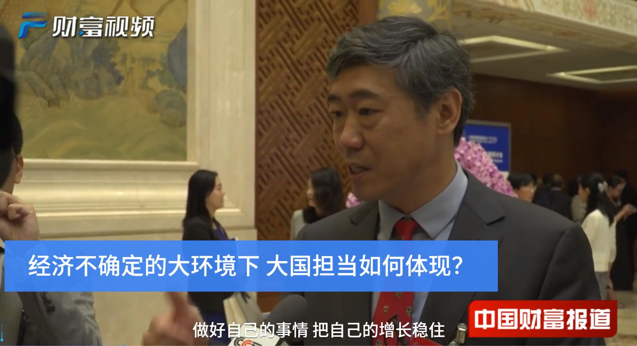 【中国财富报道】李稻葵:中国做好了自己的事情 就是世界经济的定心丸