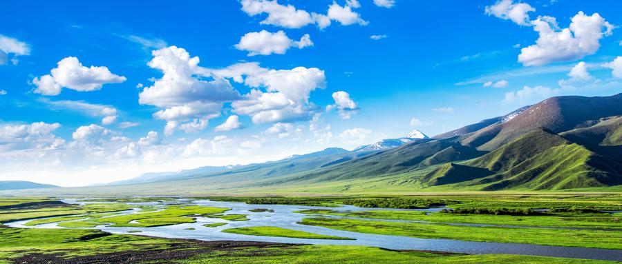102项自贸区改革试点经验在新疆落地