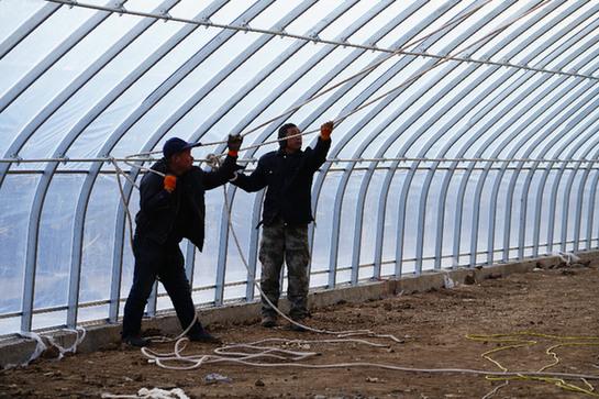 河北隆化:蔬菜产业园助力乡村振兴