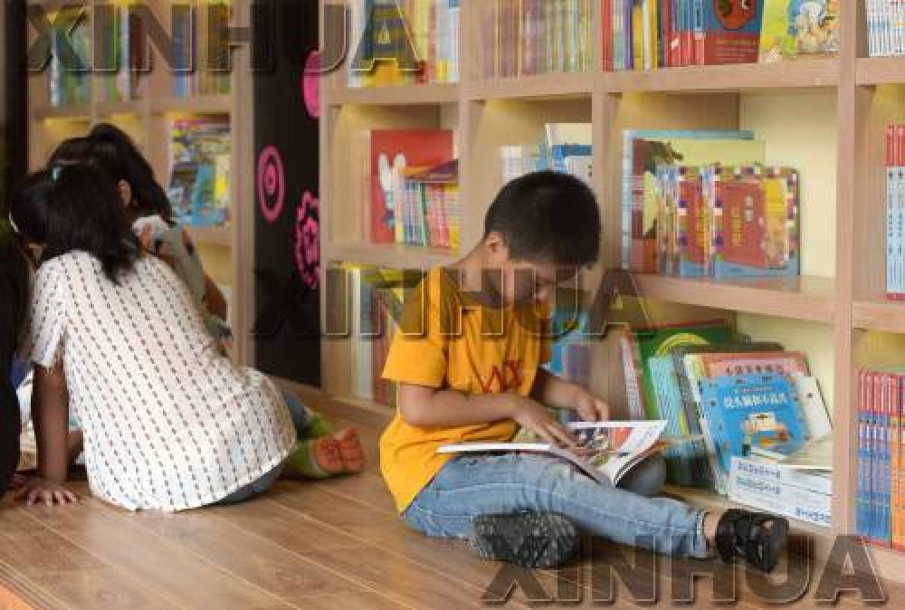 儿童文学阅读教育的盲点和突破口