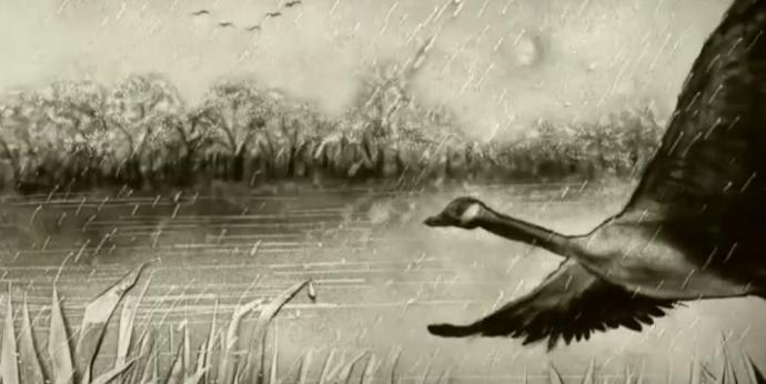 廿四節氣·雨潤江淮篇
