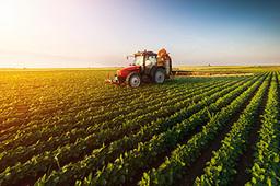 """我国化肥商业储备实现""""有章可循"""""""