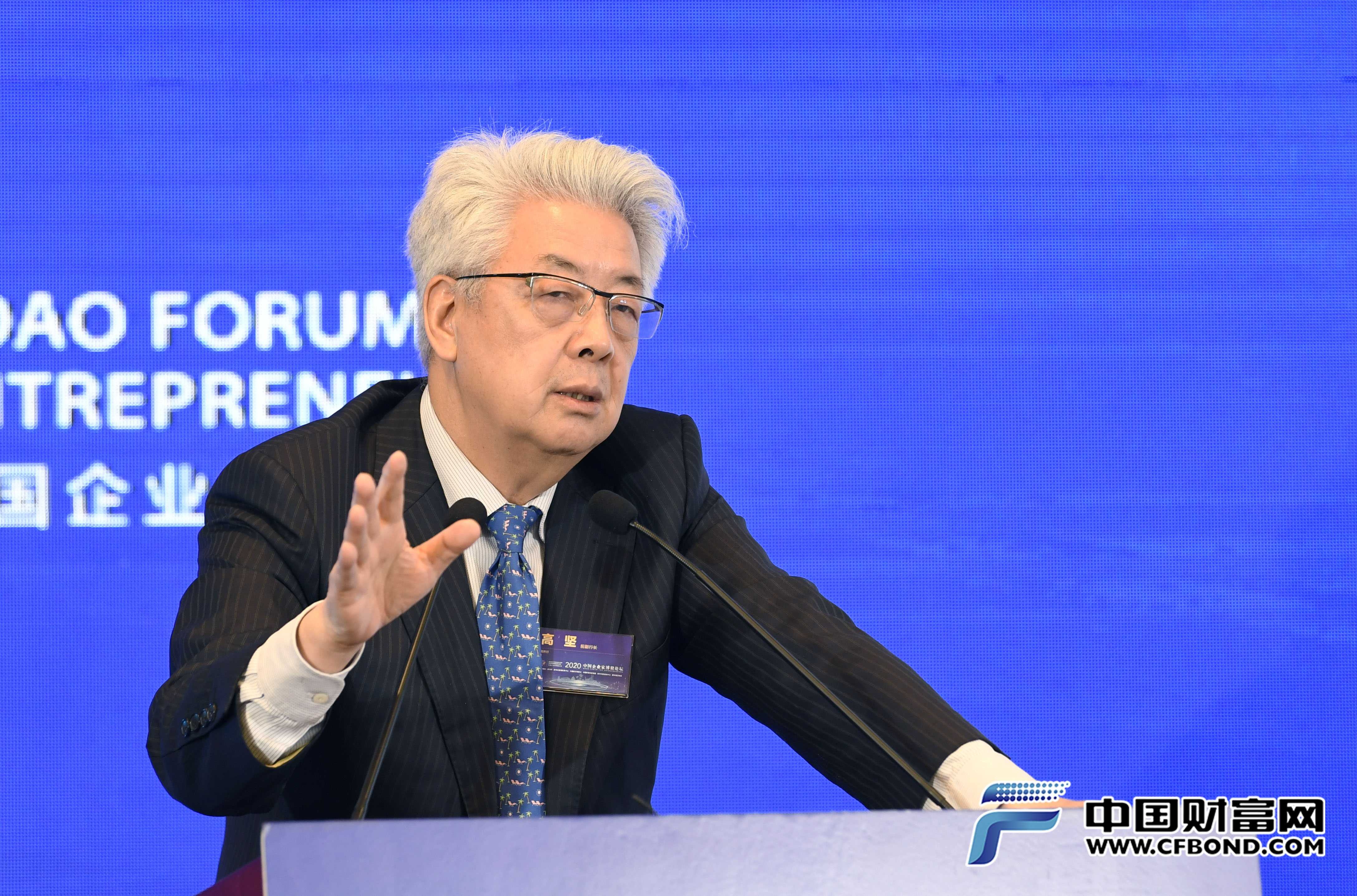 国家开发银行原副行长、中国财富研究院学术委员会副主席高坚演讲